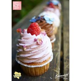 2110000045364_4828_1_jw_cupcake_himbeere_49ec4b52.jpg