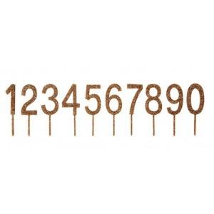 2110000065164_5424_1_meri_meri_cake_topper_zahlen_set_0-9_je_2stueck_844a4ac7.jpg
